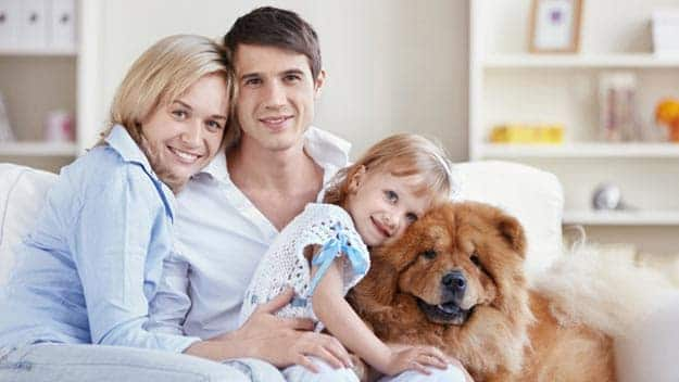Wills & Trusts dog-young-family Direct Wills Thatcham